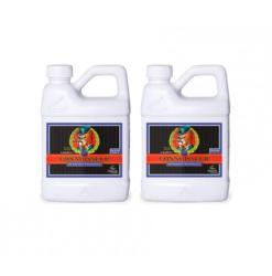 pH Perfect Connoisseur Bloom A+B - двукомпонентен минерален Тор за Цъфтеж