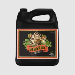 Piranha - Коренов Стимулатор